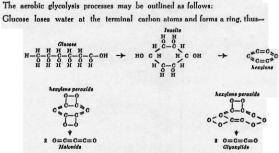 aerobic-glycolysis